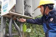 Nạn trộm dây tiếp địa ở Gia Lai: Ứng phó của ngành điện