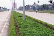 Xây dựng nông thôn mới ở Vĩnh Phúc: Dấu ấn Công Thương