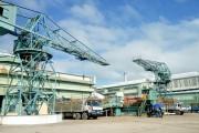 QNS đưa nhà máy điện sinh khối An Khê vào vận hành