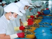 Công ty Cổ phần Thủy sản Bạc Liêu: Áp dụng thành công hệ thống quản lý an toàn thực phẩm