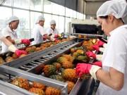 Vẫn chật vật xuất khẩu nông sản sang Trung Quốc