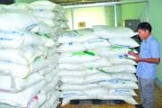 Công tác chống buôn lậu tại các tỉnh phía Nam: Mừng và lo!