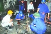 Công đoàn Than - Khoáng sản Việt Nam: Chung tay chăm lo đời sống người lao động