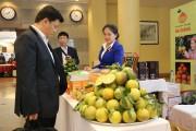 Bảo hộ chỉ dẫn địa lý: Nâng tầm thương hiệu cam sành Hà Giang