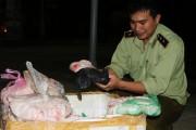 Phú Yên: Tiêu hủy 100kg mỡ heo không rõ nguồn gốc