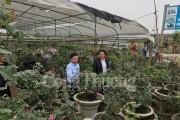 Hà Nội: Bồi dưỡng kiến thức về du lịch cho cộng đồng dân cư tại Mê Linh