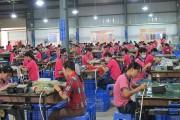 TP. Hồ Chí Minh: Hỗ trợ người lao động tham gia bảo hiểm xã hội