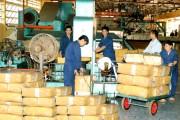 Xuất khẩu cao su trở lại mốc 2 tỷ USD