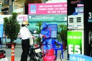 Hà Nội: Dốc sức triển khai kinh doanh xăng E5
