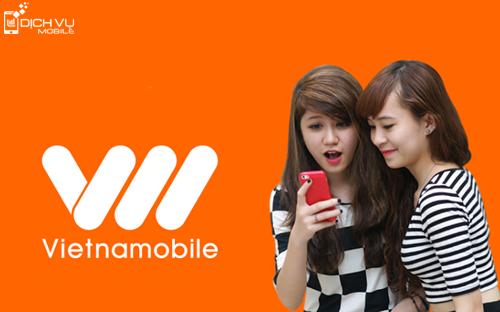 Vietnamobile cung cấp gói cước 3G vEasy dung lượng 30GB giá siêu rẻ