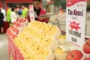 Táo Aomori chính thức được bán ở Việt Nam