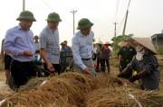 Quảng Ninh triển khai các phương án khẩn trương và quyết liệt chống bão số 7