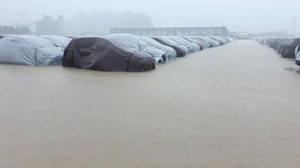 Xe ô tô tại nhà máy Hyundai Ninh Bình không bị ảnh hưởng ngập nước