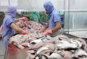 Việt Nam gửi đề nghị tham vấn lên WTO về việc Hoa Kỳ áp thuế mặt hàng cá phi lê