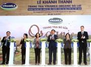 Trang trại bò sữa Organic tiêu chuẩn châu Âu đầu tiên tại Việt Nam