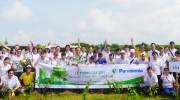 Panasonic được vinh danh Giải thưởng môi trường Việt Nam lần thứ 2
