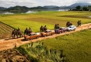 Tháng năm: Ford Việt Nam tăng trưởng 6%