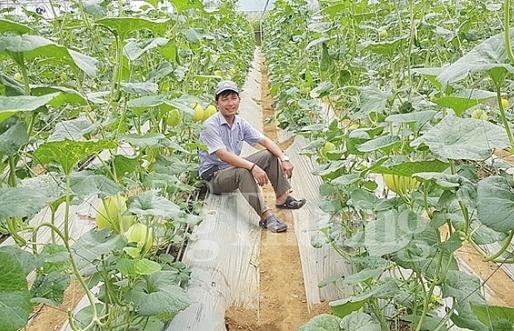 da nang hot xu huong kinh doanh nong san sach online