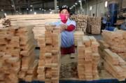 10 tháng - xuất khẩu của Việt Nam sang Thổ Nhĩ Kỳ gặp khó khăn