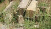 Liên tiếp phát hiện nhiều vụ tập kết gỗ khai thác trái phép