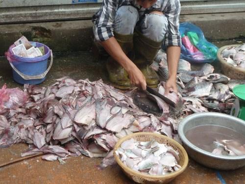 Xác minh thông tin cá ươn chợ đầu mối Dịch Vọng
