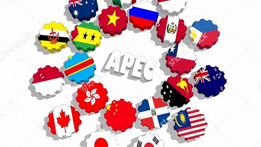 Việt Nam đóng góp những sáng kiến thiết thực trong APEC