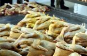 Đưa chất vàng ô vào danh mục cấm sử dụng trong thức ăn chăn nuôi