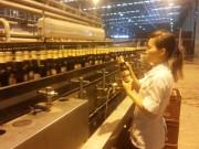 Bia Hà Nội - Chất lượng chinh phục người tiêu dùng