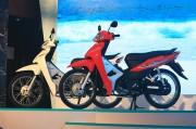 Honda Việt Nam giới thiệu Wave Alpha 110cc