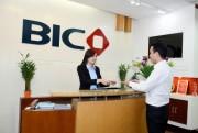 BIC tăng trưởng mạnh ở kênh Bancassurance