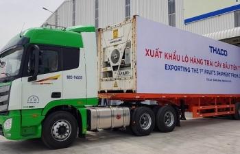 30 container chuoi tri gia hon nua trieu do duoc xuat khau tu quang nam