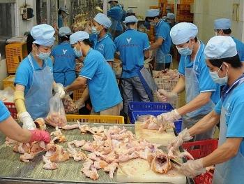 doanh nghiep chu dong phong chong thuc pham ban dam bao nguon cung