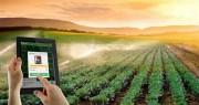 23 Startup công nghệ nông nghiệp tham gia chung kết chương trình MATCh 2018