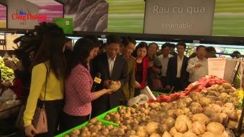 Quản lý thị trường Hà Nội cần quyết liệt, hiệu quả để nhân dân vui Xuân, đón Tết