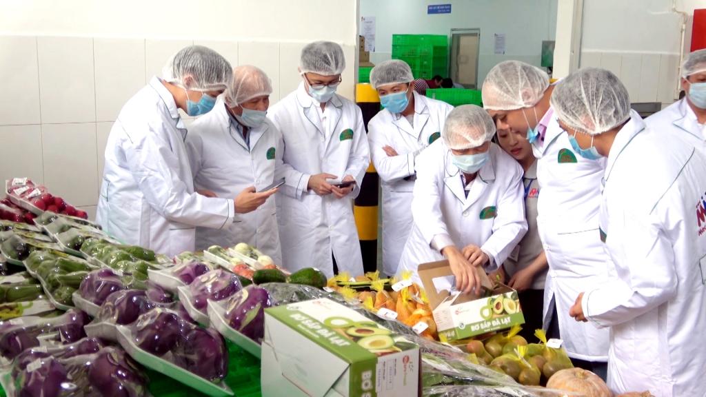 Cơ hội lớn cho xuất khẩu rau củ sang Singapore