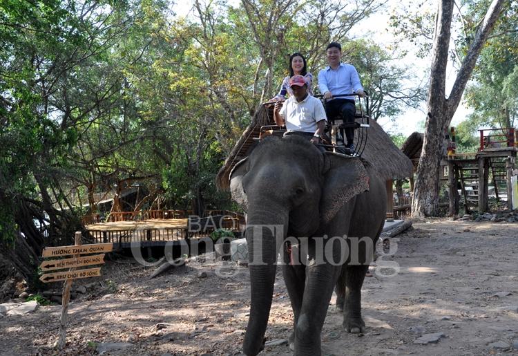 Buôn Đôn: Mảnh đất đại ngàn với những chú voi huyền thoại
