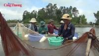 Phóng sự: Thâm hụt lao động ngành thủy sản tiếp tục gia tăng