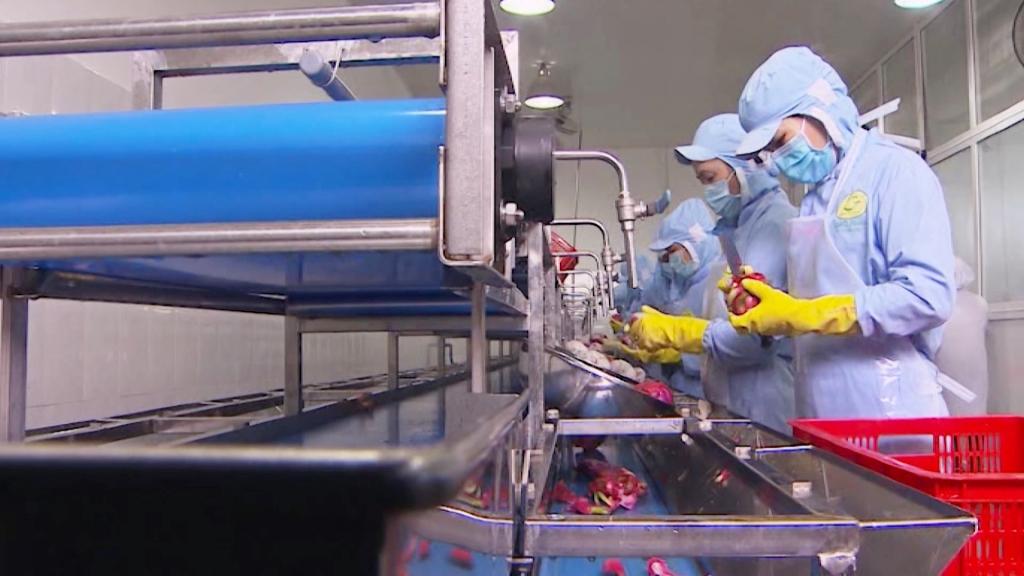 Lâm Đồng: Đẩy mạnh sản xuất sạch trong công nghệ chế biến nông sản