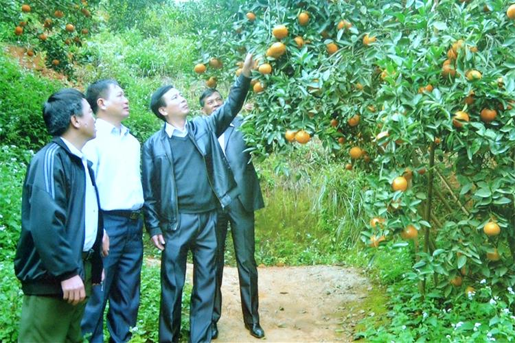 Nâng cao hiệu quả an sinh xã hội vùng Tây Bắc - Tuyên truyền, nhân rộng sự ủng hộ trong toàn xã hội