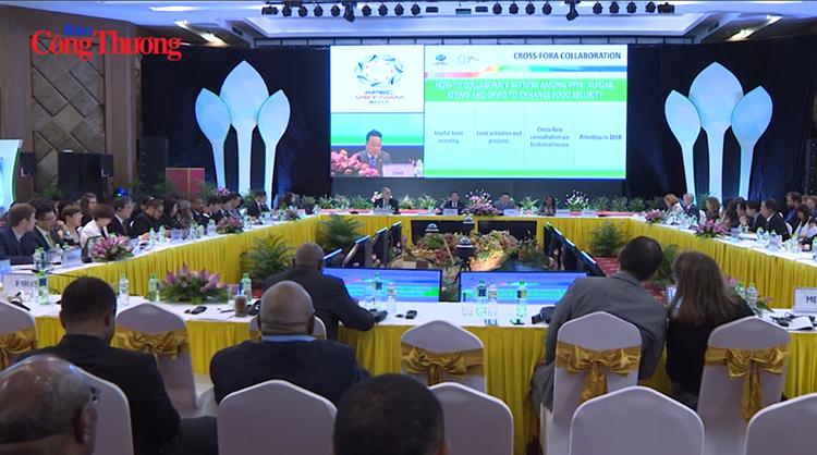 Việt Nam sẵn sàng phối hợp với các nước thành viên APEC đảm bảo an ninh lương thực