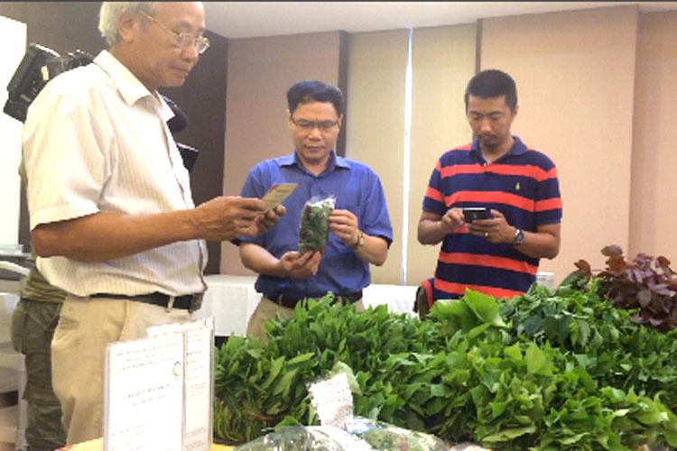 Khuyến nghị chính sách để quản lý phát triển nông nghiệp hữu cơ