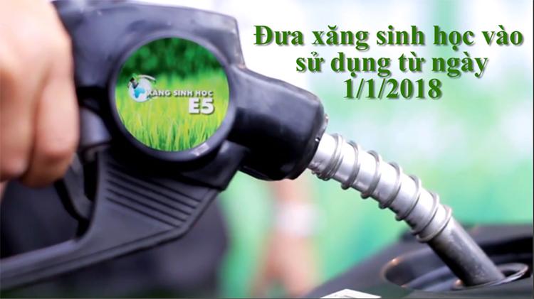 Xăng E5 - Những lợi ích cho môi trường và nền kinh tế
