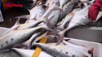 Nhiều giải pháp tăng kim ngạch xuất khẩu thủy sản trong 2019