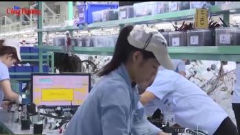 Triển vọng thu hút vốn FDI Nhật Bản vào Việt Nam