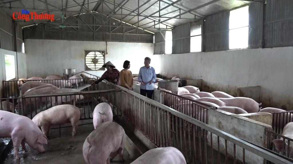 """Thị trường thịt lợn """"ấm"""" dần"""