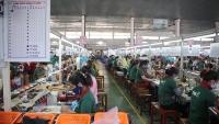 Cập nhật tin tức, thị trường, xuất nhập khẩu ngày 28-5