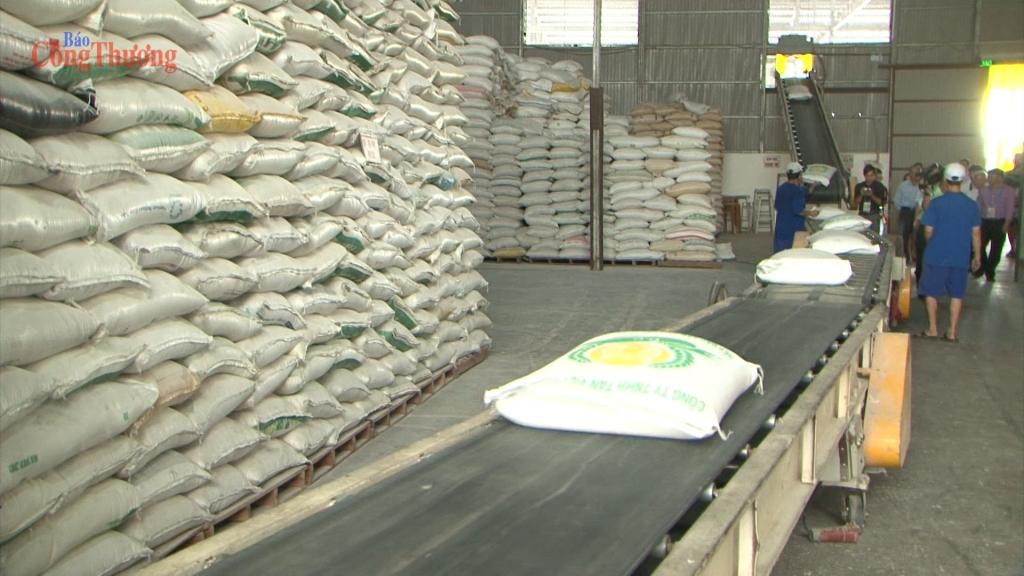 Nâng chất cho gạo Việt