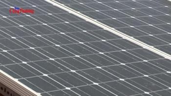 """Thị trường năng lượng tái tạo Việt Nam:  """"Trứng vàng"""" ngàn tỷ cho nhà đầu tư"""
