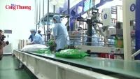 Nghị định 107/2018/NĐ-CP  - Tạo đà cho kinh doanh xuất khẩu gạo